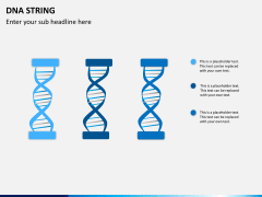 DNA string PPT slide 6