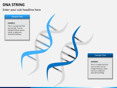 DNA string PPT slide 7