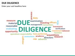 Due diligence PPT slide 29
