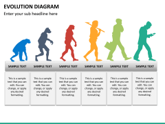 Evolution diagram PPT slide 26