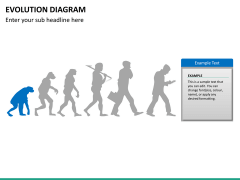 Evolution diagram PPT slide 18