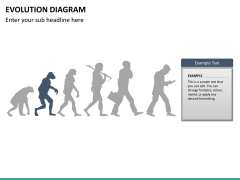 Evolution diagram PPT slide 19