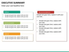 Executive summary PPT slide 19