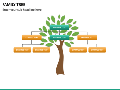 Family tree PPT slide 11