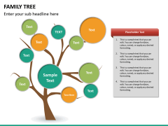 Family tree PPT slide 14