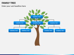 Family tree PPT slide 3