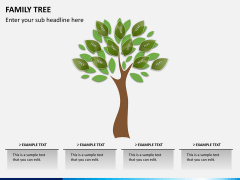 Family tree PPT slide 7