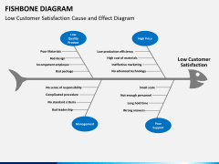 Fishbone diagram PPT slide 17