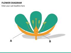 Flower diagram PPT slide 25