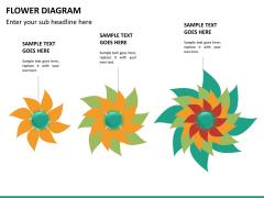 Flower diagram PPT slide 21