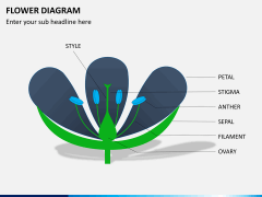 Flower diagram PPT slide 10