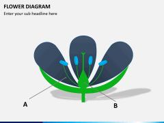Flower diagram PPT slide 11