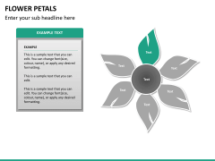 Flower petals PPT slide 15