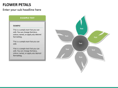 Flower petals PPT slide 16