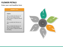 Flower petals PPT slide 17