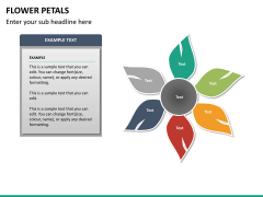 Flower petals PPT slide 19