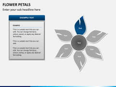 Flower petals PPT slide 5