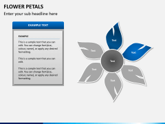 Flower petals PPT slide 6