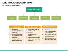 Functional organization PPT slide 13