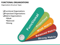 Functional organization PPT slide 16