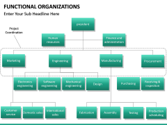 Functional organization PPT slide 18