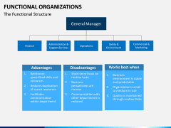 Functional organization PPT slide 1
