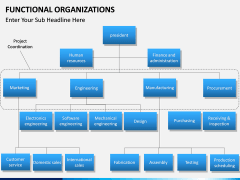 Functional organization PPT slide 6