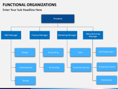 Functional organization PPT slide 7