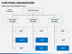 Functional organization PPT slide 9