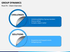 Group dynamics PPT slide 14