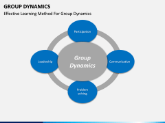 Group dynamics PPT slide 17