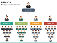 Hierarchy PPT slide 15