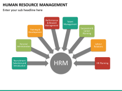 HR management PPT slide 17