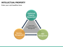 Intellectual property PPT slide 29