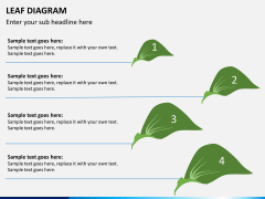 Leaf diagram PPT slide 6