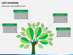 Leaf diagram PPT slide 8