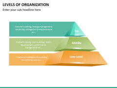 Levels of Organization PPT slide 7