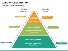 Levels of Organization PPT slide 8