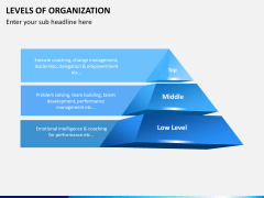 Levels of Organization PPT slide 3