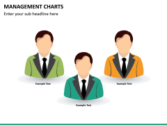 Management charts PPT slide 14