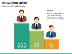 Management charts PPT slide 16