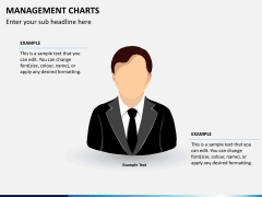 Management charts PPT slide 7