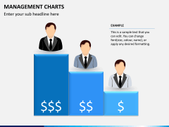 Management charts PPT slide 8