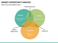 Market opportunity PPT slide 29