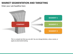 Market segmentation and targeting PPT slide 13