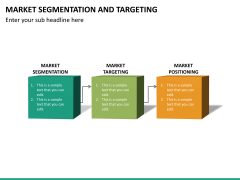 Market segmentation and targeting PPT slide 14