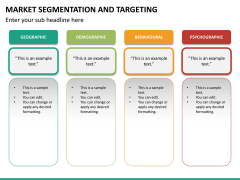 Market segmentation and targeting PPT slide 16