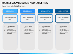 Market segmentation and targeting PPT slide 5