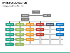 Matrix organization PPT slide 14
