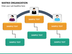 Matrix organization PPT slide 17